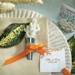 Coral Bottle Stopper with Gift Packaging image