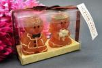 Bride and Groom Gingerbread Candles image